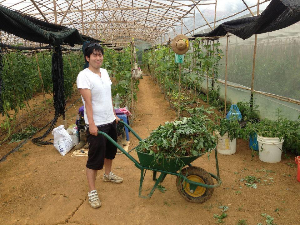 ベトナムの友だちの農園に農業をしに行った時の写真
